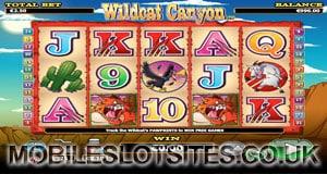 wildcat canyon slot